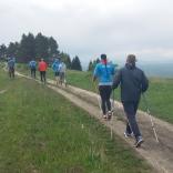 Тренировки с элементами Скандинавской ходьбы