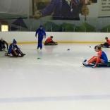 тренировки на льду